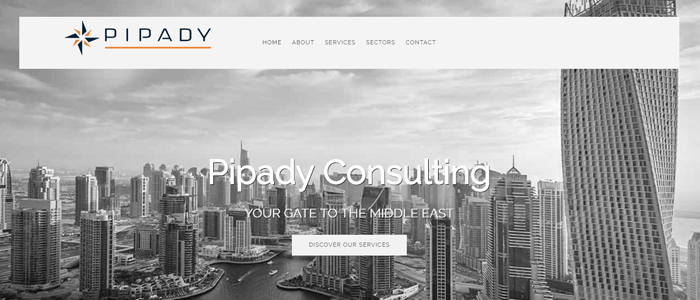 Pipady Consulting