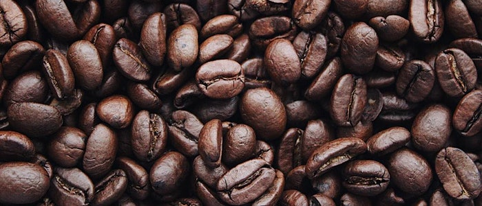 Top 5 Wholesale Coffee Brands
